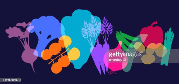 supermarket vegetables - parsnip stock illustrations, clip art, cartoons, & icons