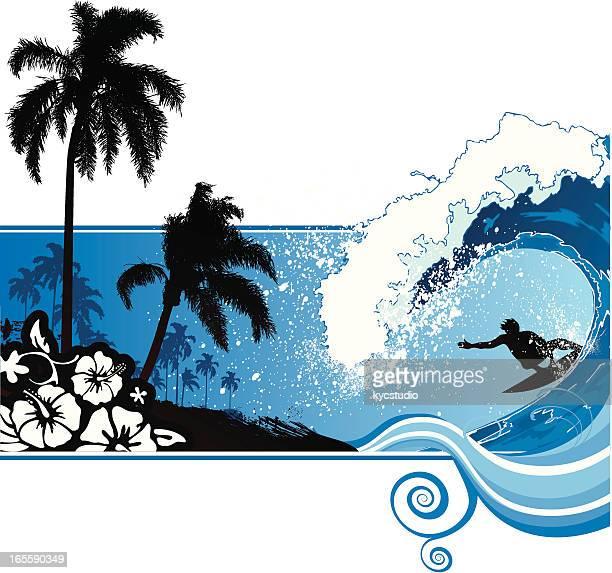 illustrations, cliparts, dessins animés et icônes de surfeur et les palmiers - planche de surf