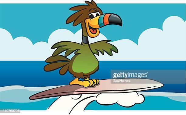 ilustraciones, imágenes clip art, dibujos animados e iconos de stock de tucán surfista - salina estado natural de terreno