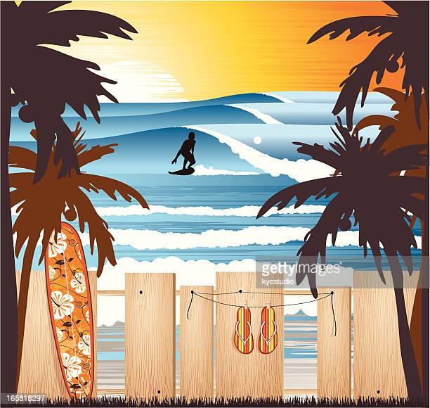 ilustrações, clipart, desenhos animados e ícones de surfe na praia tropical ao pôr do sol - esportes extremos