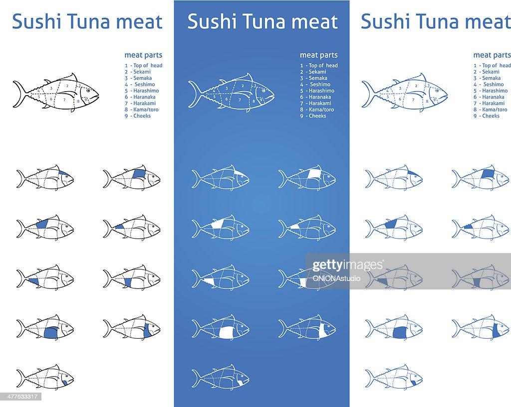 Sushi tuna meat cuts diagram set