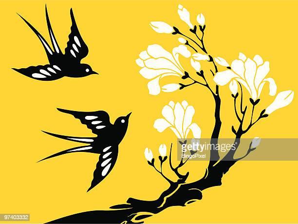 illustrations, cliparts, dessins animés et icônes de avaler & fleur - hirondelle