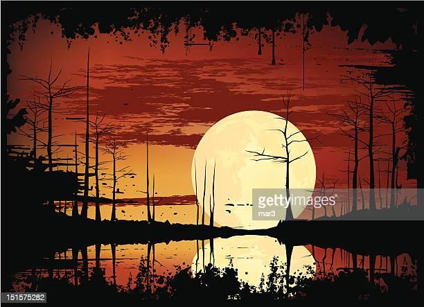 stockillustraties, clipart, cartoons en iconen met swamp sunset - broek