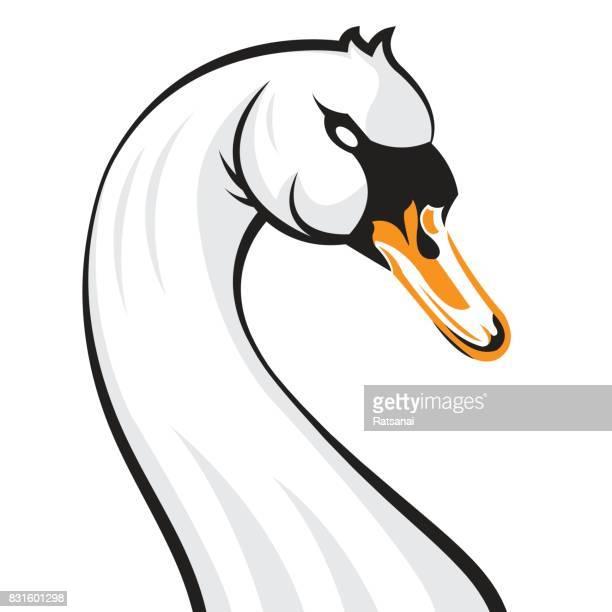 swan cartoon - swan stock illustrations
