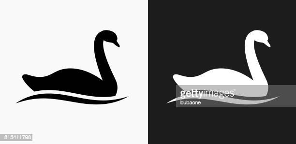 swan icon on black and white vector backgrounds - swan stock illustrations
