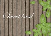 Sweet basil leaves on wooden cutting board. Mint leaf. Banner design elements. Vector