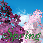 Sweet Lilac on the blue-sky background. Vector Lilac flowers, blue-sky and light cloud. The word spring written in green grass
