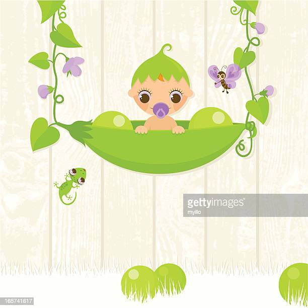 sweet pea. baby in a pod - childbirth stock illustrations