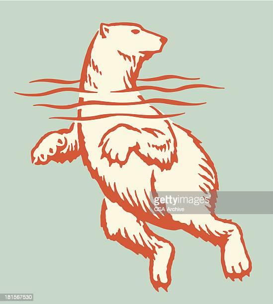 illustrations, cliparts, dessins animés et icônes de ours polaire natation - ours polaire