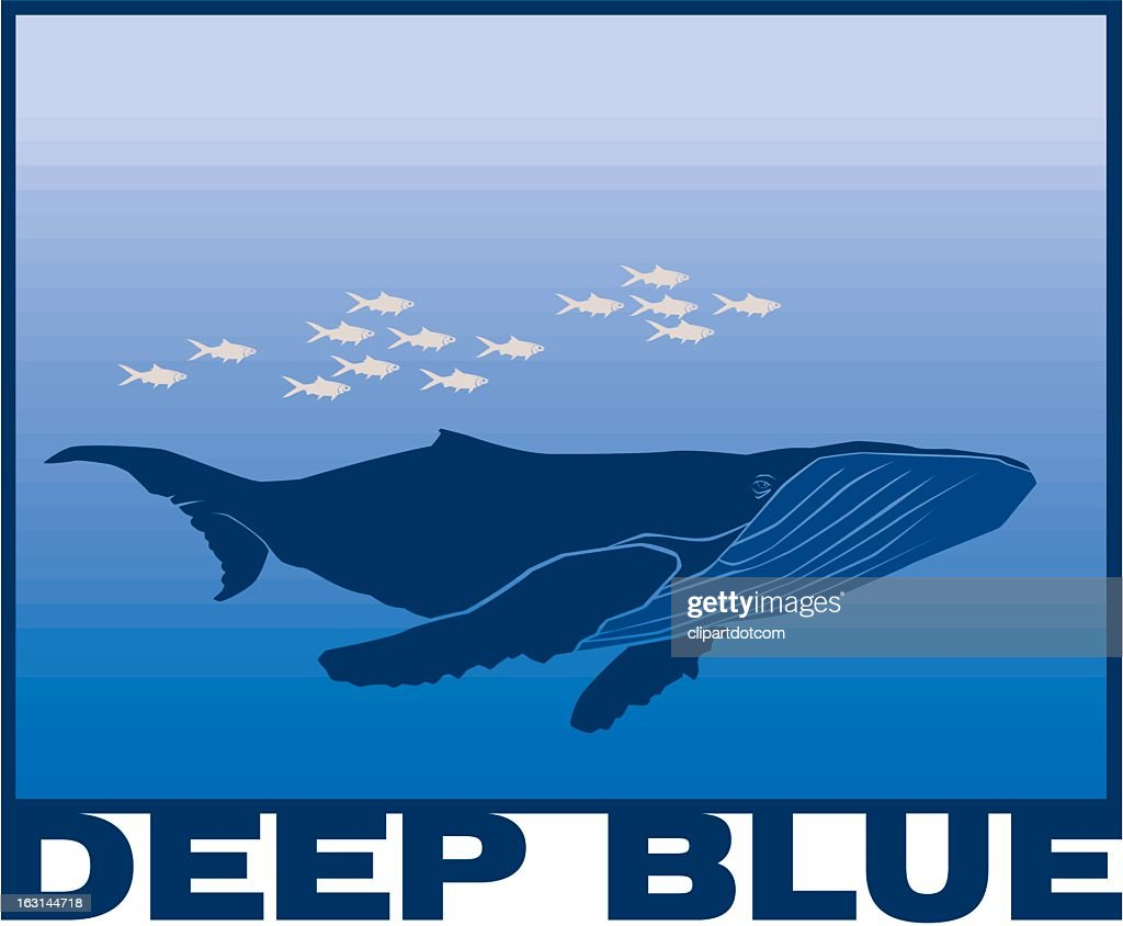 Swimming Whale : stock illustration