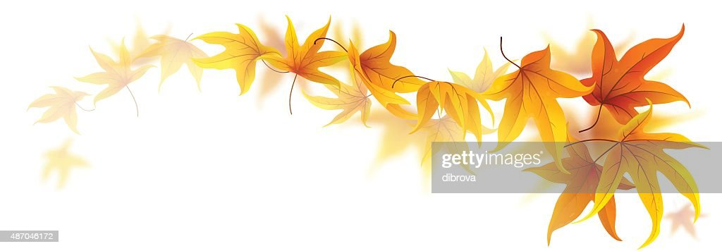 Swirl of autumn leaves