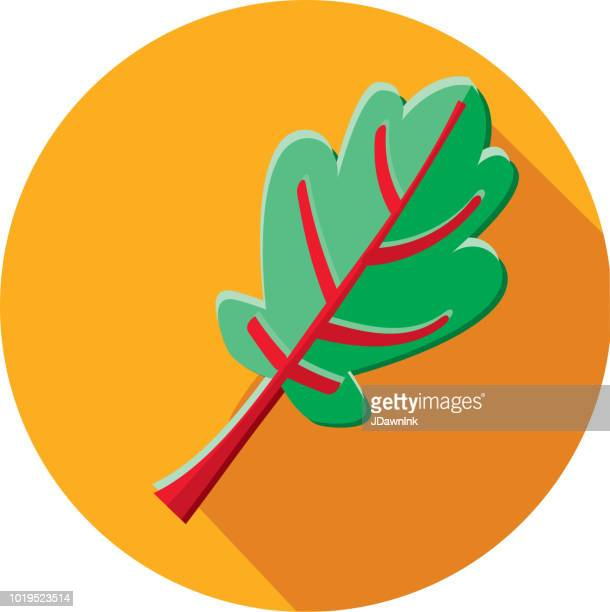 swiss chard vegetables flat design themed icon with shadow - chard stock illustrations, clip art, cartoons, & icons