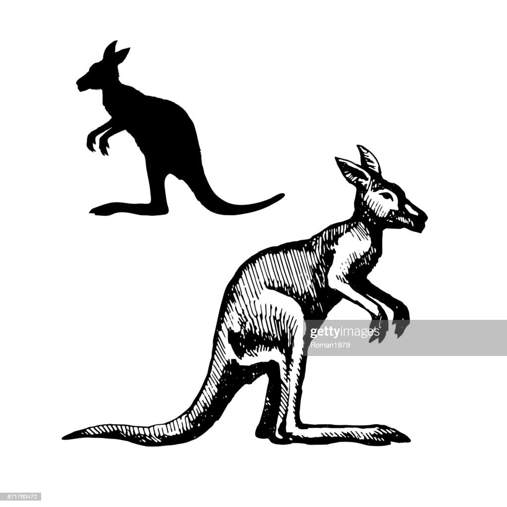 Symbol Of Australia Vector Art Getty Images
