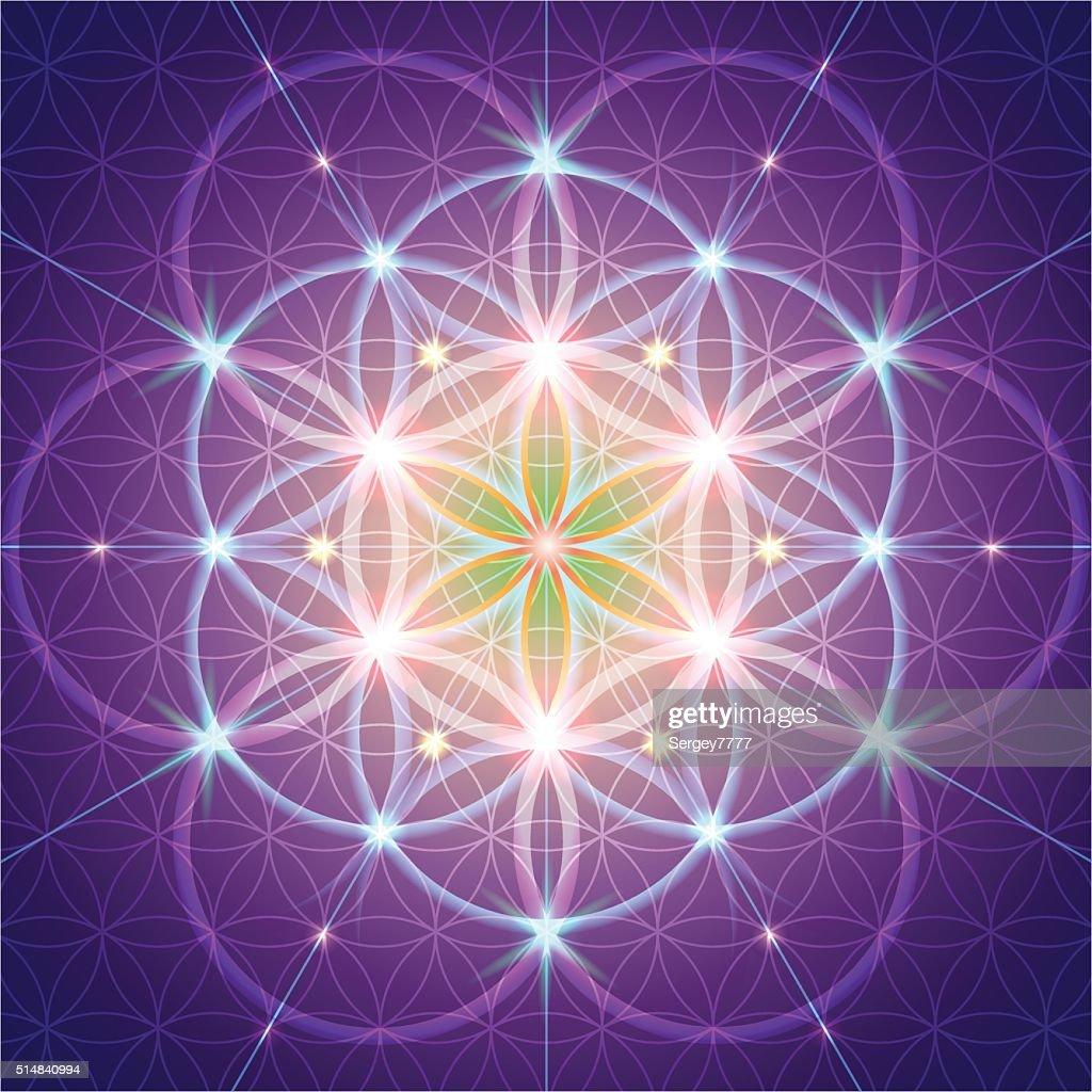 symbol of Sacred Geometry