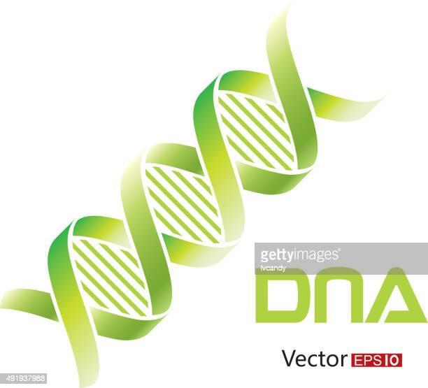 dna-symbol - helix stock-grafiken, -clipart, -cartoons und -symbole