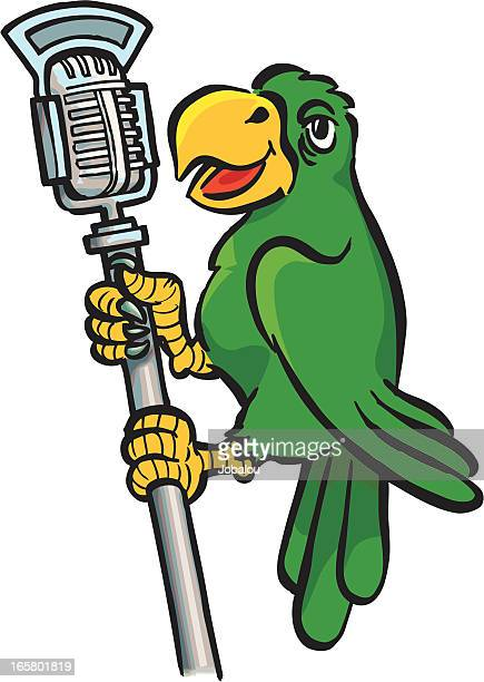 talkative parrot - microphone stand stock illustrations