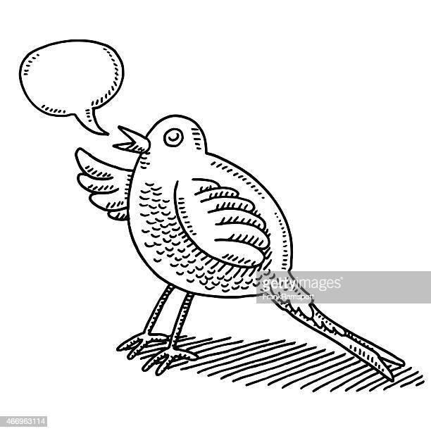 Talking Cartoon Bird Speech Bubble Drawing