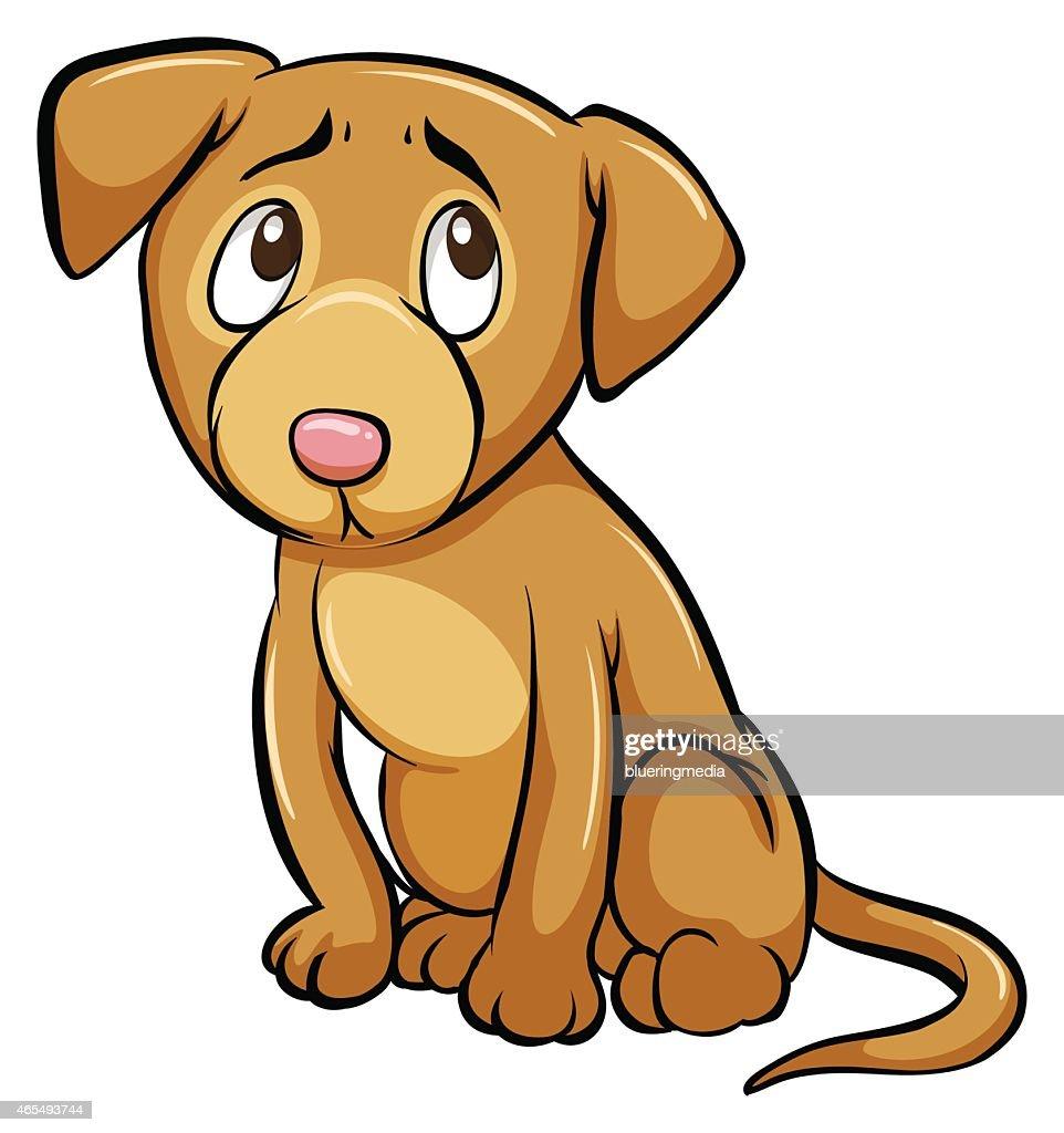 Tamed dog