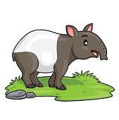 Tapir Cartoon
