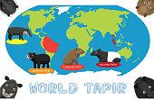 Tapir Distribution World Map Cartoon Vector
