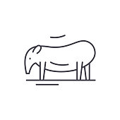 Tapir line icon concept. Tapir vector linear illustration, symbol, sign