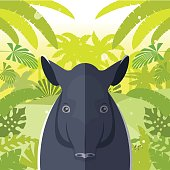 Tapir on the Jungle Background