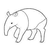 Tapir outline illustration