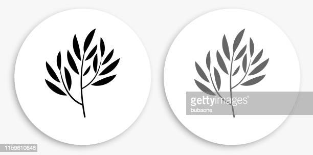 tea plant black and white round icon - plant attribute stock illustrations, clip art, cartoons, & icons