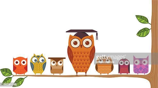 ilustrações, clipart, desenhos animados e ícones de professor coruja - sabedoria