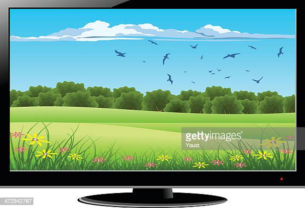 LCD Television With Green Nature on Screen