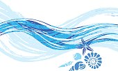 Template of sea shells and wave. Vector illustration