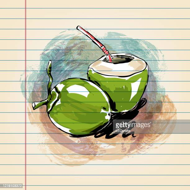 tender coconut  drawing on ruled paper - affectionate stock illustrations