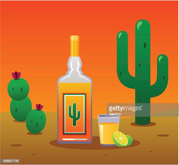 tequila - tequila drink stock illustrations, clip art, cartoons, & icons