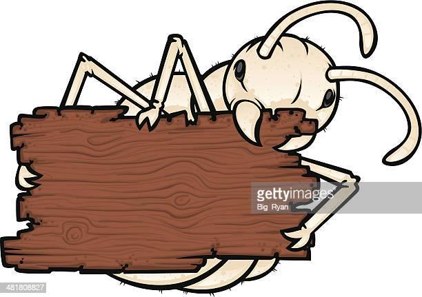 illustrations, cliparts, dessins animés et icônes de termite de bois mâcher - termite