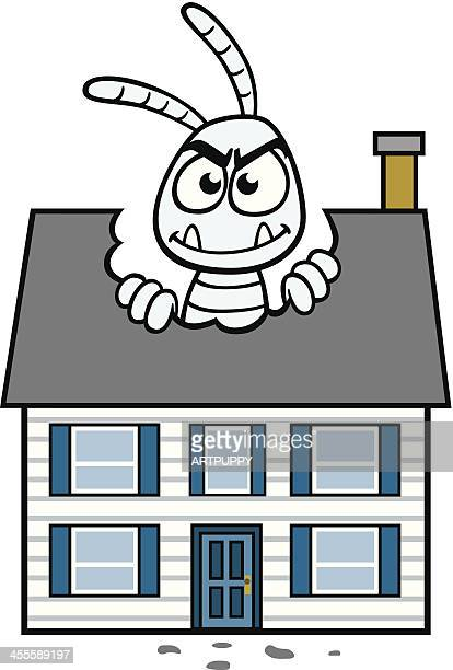 Get Termite Treatment for Your Home | Behm's Pest Control ... |Termites Eating House
