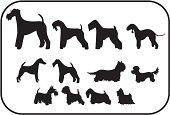 Terriers, Twelve Silhouettes