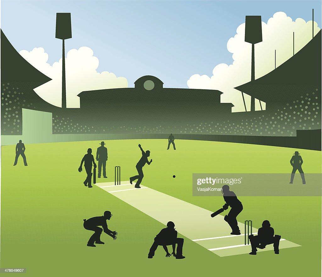 Test Match in Cricket