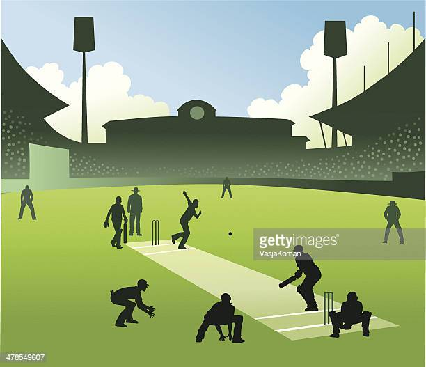 test match in cricket - cricket pitch stock illustrations
