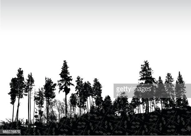 textured treeline - deciduous tree stock illustrations, clip art, cartoons, & icons