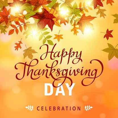 Thanksgiving Leaves Background - gettyimageskorea