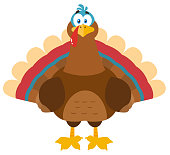 Thanksgiving Turkey Bird Cartoon Mascot Character