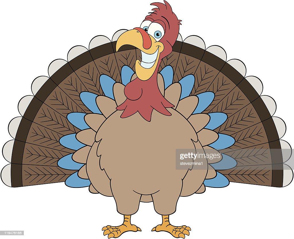 Thanksgiving Turkey : stock illustration