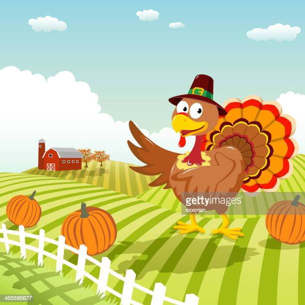 thanksgiving turkey - enclosure stock illustrations