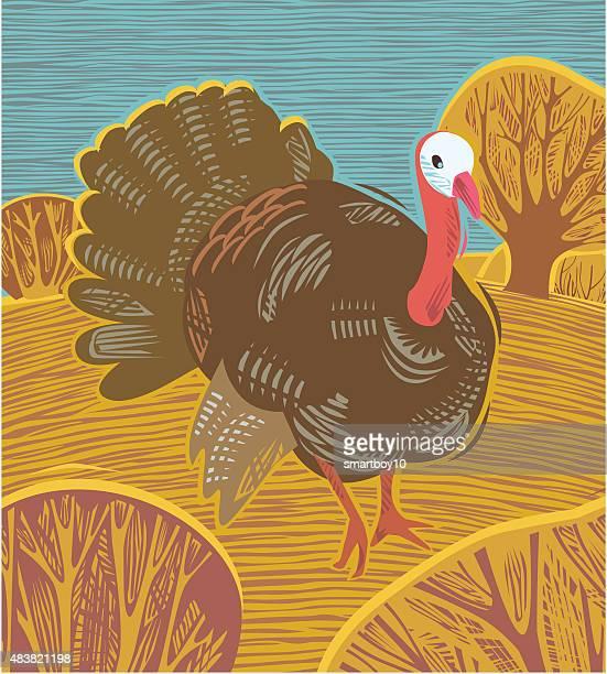 thanksgiving turkey - hawthorn,_victoria stock illustrations