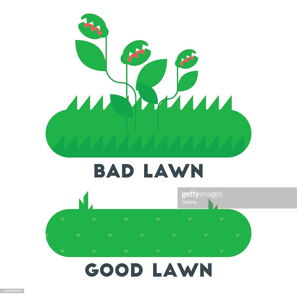 The bad and good green grass lawn concept.