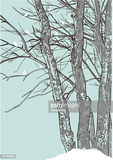 die bareness winter - ast pflanzenbestandteil stock-grafiken, -clipart, -cartoons und -symbole