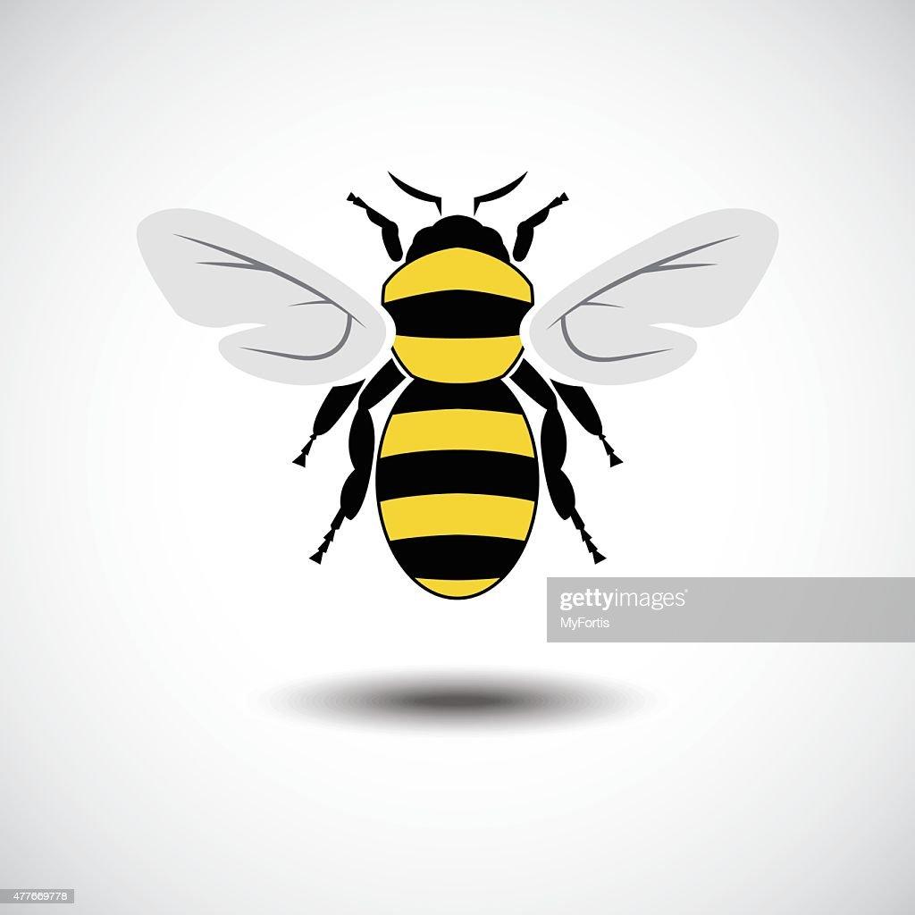 The Bee. : stock illustration