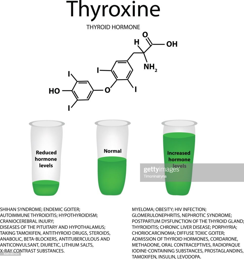 The chemical molecular formula of the hormone thyroxine. Thyroid hormone. Decrease and increase of thyroxine. Infographics. Vector illustration