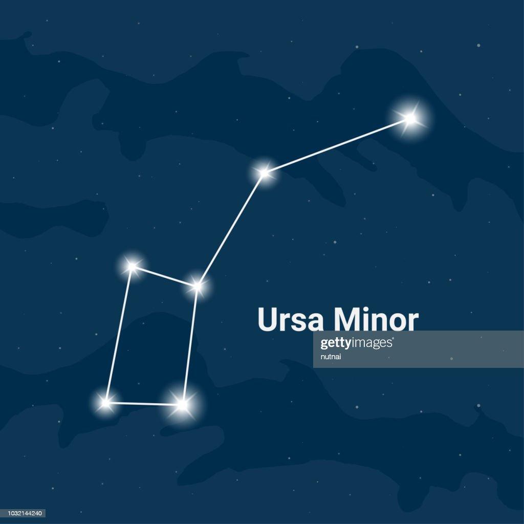The constellation Ursa Minor (The Little Bear) - Vector