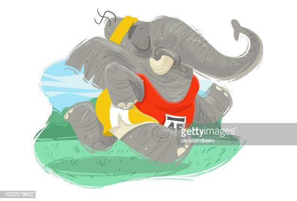 The elephant runner